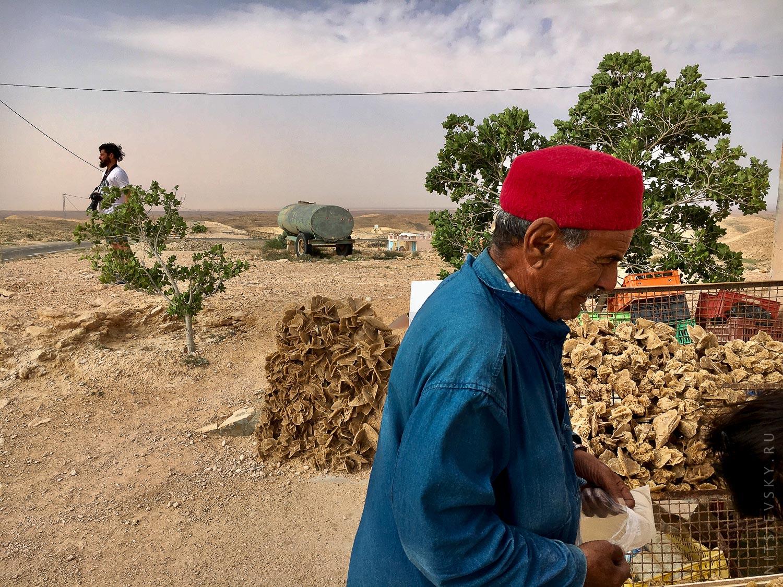 Берберы в Сахаре
